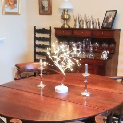 Fairy Light Tree - The Fairy Light Spirit Tree photo review
